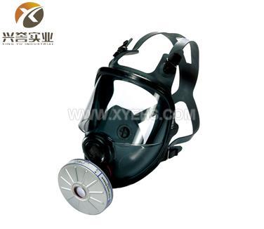 霍尼韦尔(诺斯)54201/54301防毒面具(全面罩)