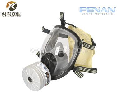 芬安单滤罐球形全面罩防毒面具